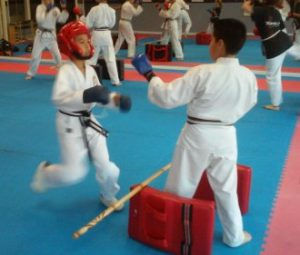 karate drill for chambering your leg correctly